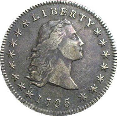 Silver hair dollar